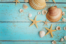 Summer Seashells On Sand