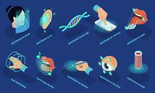 Isometric Biometric Identification Set