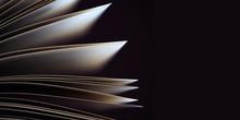 Panoramic Macro View Of Book P...