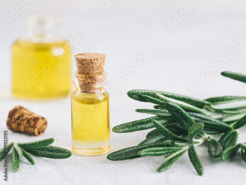 Fototapeta Rosemary oil. Rosemary essential oil oil in small glass bottle and branches of plant fresh rosemary on white background. Copy space for text. obraz