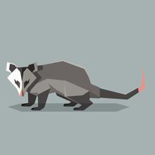 Flat Polygonal Opossum