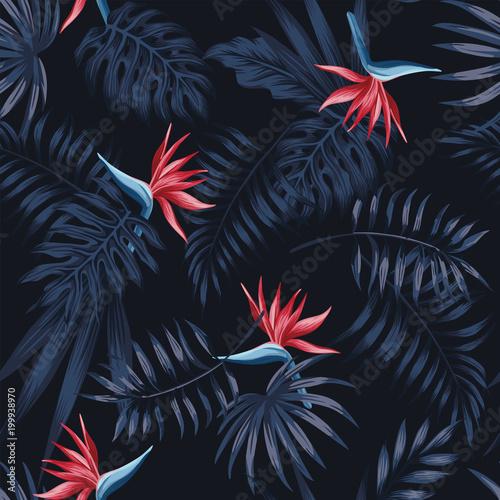 strelitzia-czerwony-ciemny-wzor