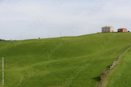 Fotobehang Landschap Rural green landscape in springtime.