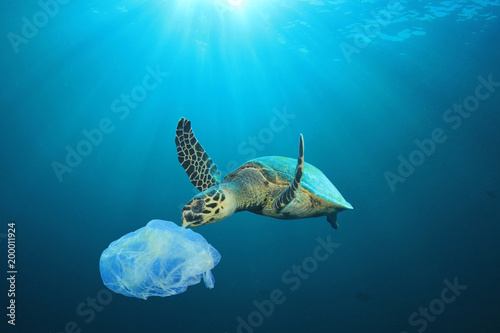 Poster Schildpad Plastic pollution in ocean problem. Sea Turtle eats plastic bag