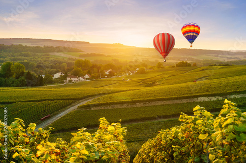 Recess Fitting Balloon Colorful hot air balloons flying over champagne Vineyards at montagne de Reims, France