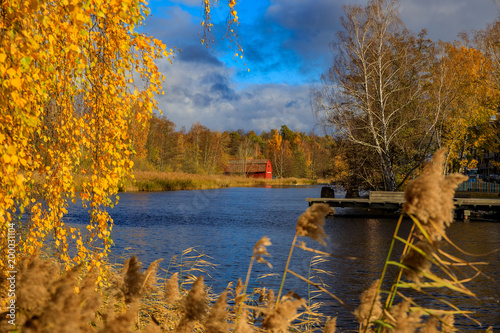 Aluminium Prints Melon Fall landscape with bright yellow trees reflecting in a blue lake outside Stockholm