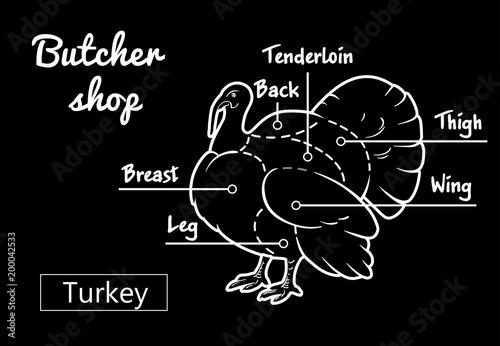 500_F_200042533_GZBFiHcW8y4Jo4SOFBaAPKZFtDZlgPzn meat cuts poster butcher diagram and scheme turkey vintage hand