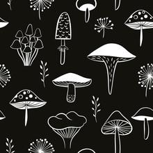 Mushrooms Seamless Pattern, Black And White
