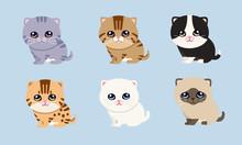 Character Set Kitten Cute Cartoon Style Flat, Different Varieties