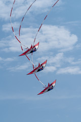 Fototapeta Niebo Kites flying in sky