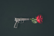 Red Rose Shooting From Gun Iso...