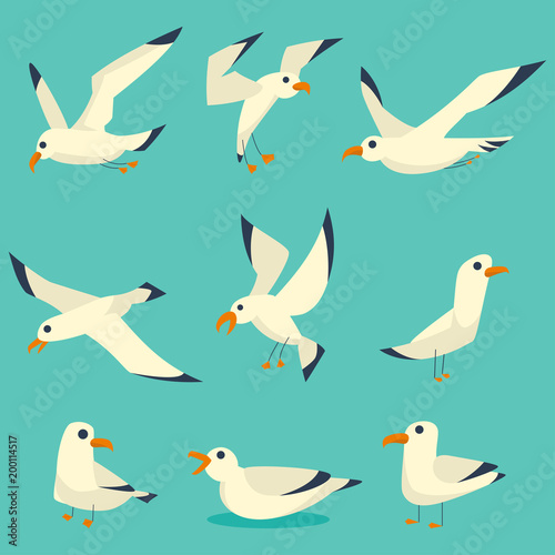 Fotografia Flying, on the water and standing seagulls cartoon set