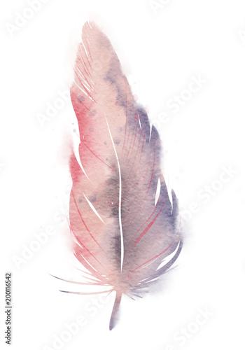 rozowe-fioletowe-pioro-akwarela-efekt