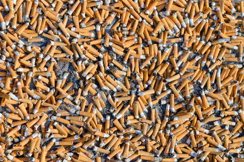 Garbage from large number of cigarette butts, background Fototapeta
