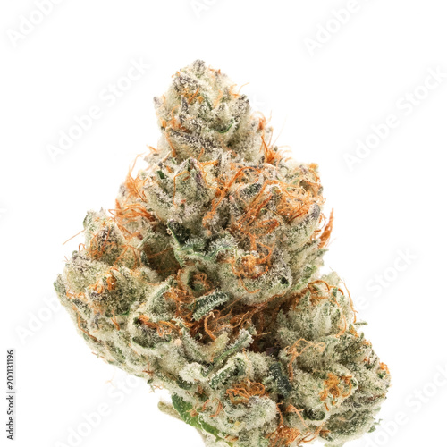 Photo Afghani Sugar Glue - Medical Cannabis Weed Bud