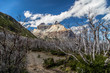 canvas print picture Trekking in Torres del Paine Nation Park with view on Cerro Paine Grande mountain, Patagonia, Chile