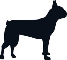 Boston Terrier Silhouette Black