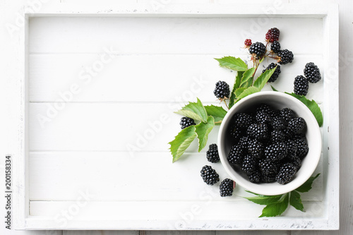 Bowl of fresh ripe blackberries in white wooden tray, top view Canvas Print