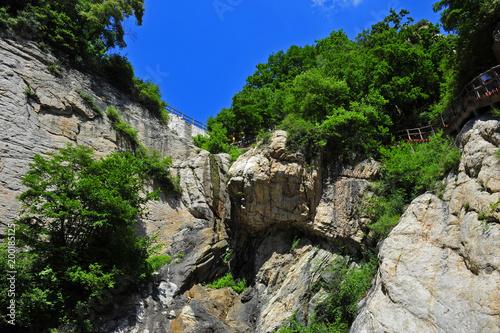 Keuken foto achterwand Zwart Summer mountain forest landscape