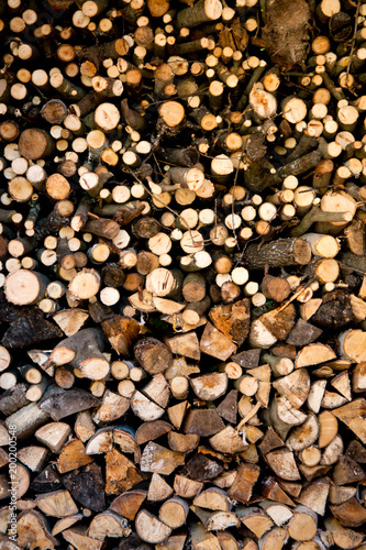 Poster Brandhout textuur Pile of dry stacked firewood for winter