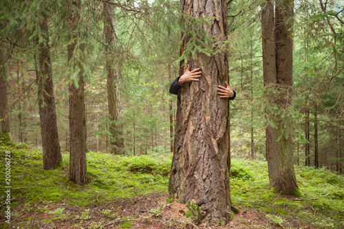 Fotomural  a boy hugging a tree in the woods