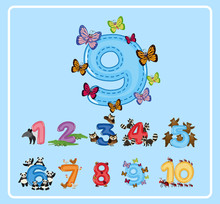 Flashcard Design For Number Ni...