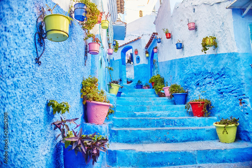 Deurstickers Morocco is the blue city of Chefchaouen, endless streets painted in blue color. Lots of flowers and Souvenirs in the beautiful streets of Chefchaouen. A magical fairy-tale city of heavenly color