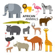 African or zoo animals. Cute cartoon characters. Vector illustration.
