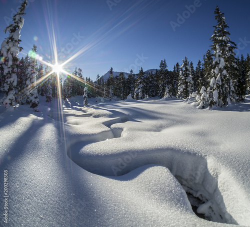 Foto op Plexiglas Arctica sunlit winter alpine meadow