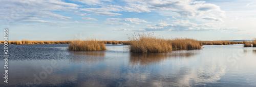Fotografie, Obraz  Seewinkel im Nationalpark Neusiedler See (A)