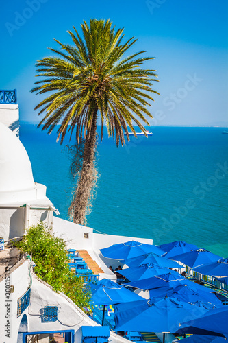 Staande foto Tunesië Cafe with beautiful view on Sidi Bou Said harbour