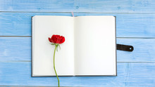 Red Rose On A Notebook And Blu...