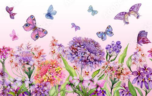 Kolorowy lato szeroki baner. Piękni żywi iberys kwitną z zielonymi liśćmi na różowym tle. Szablon poziomy. Bezszwowe panoramiczny kwiatowy wzór. Malarstwo akwarelowe.