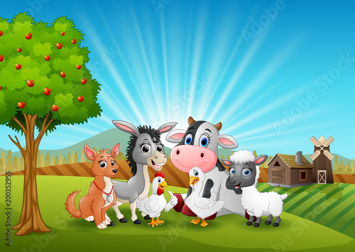 Poster Dogs Animals farm relax in the morning