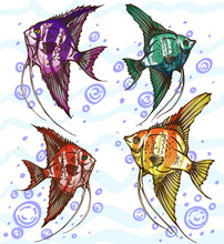 Four Colored Angelfish Handmad...
