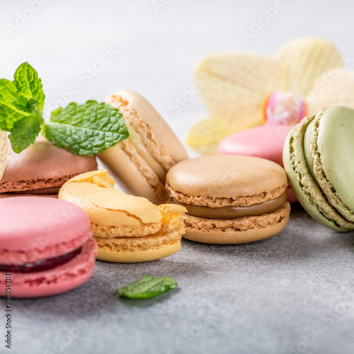Poster Macarons French assorted macarons with mint leaves on light gray concrete background. Holidays food concept with copy space.