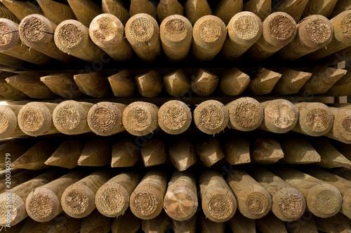 Fotografia, Obraz  bois pieu piquet clôture poteau matière texture enfoncer pique