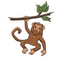 Monkey Hanging On A Tree Branc...