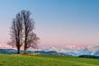 Sonnenuntergang über dem Emmental und den Voralpen