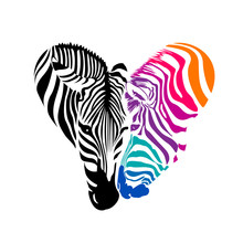 Zebra Head, Black And Colorful...