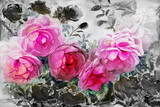 Painting watercolor flowers landscape pink black color of roses. - 200474519