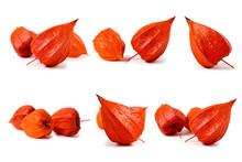 Set Of Physalis Fruit. Isolate...