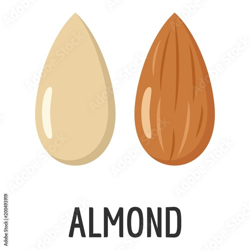 Canvas Print Almond icon. Flat illustration of almond vector icon for web