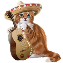 Ginger Kitten Playing The Guit...