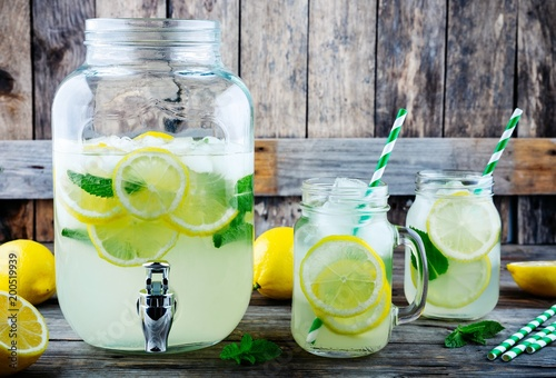 Fotografie, Obraz  Homemade lemonade with mint, ice, and fresh lemon slices in mason jar