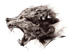 Sketch Wolf Wolf Sideways On A...