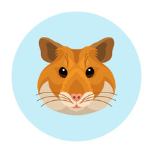 Vector Cute Hamster Face Pet I...