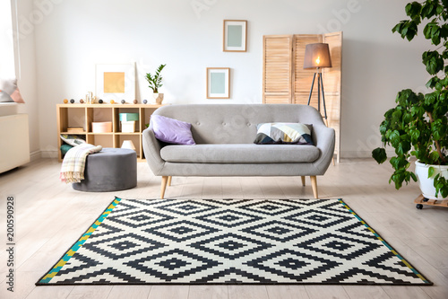 Fotografie, Obraz Modern living room interior with stylish sofa and carpet