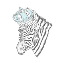 A Zebra In The Crown. Vector I...