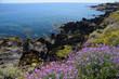 イタリア、シチリアのパンテッレリア島の風景